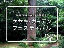 Mirai_keyaki_4